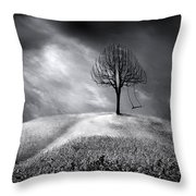 The Swing That Swings Alone Throw Pillow