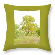 The Sycamore Throw Pillow