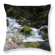 The Tananamawas Flowing Through The Forest Throw Pillow