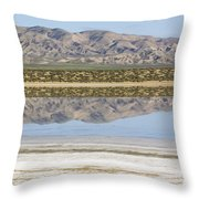 The Temblor Range Is Reflected In Soda Throw Pillow