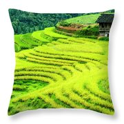 The Terraced Fields Scenery In Autumn Throw Pillow