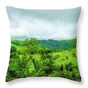 The Terrain Of Costa Rica  Throw Pillow