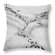 The Terrible Winter - Migration Throw Pillow