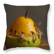 The Theory Of Aristotle Throw Pillow