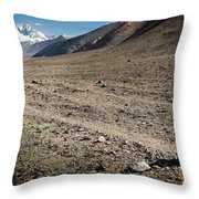 The Thought Throw Pillow