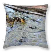 The Three Amigos Ducklings Throw Pillow
