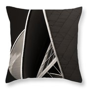 The Thrust Of Culture  Throw Pillow