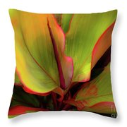 The Ti Leaf Plant In Hawaii Throw Pillow