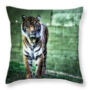 The Tigress Throw Pillow