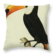 The Toco Toco Toucan  Ramphastos Toco Throw Pillow