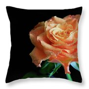 The Touch Of A Rose Throw Pillow by Tracy Hall