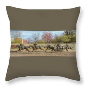 The Track - Thoroughbred Park - Lexington Kentucky Usa Throw Pillow
