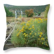 The Tracks At Pagosa Junction Throw Pillow