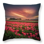 The Tranquil Morning Before Sunrise Throw Pillow