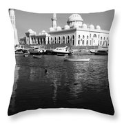 The Tranquil Pass  Throw Pillow