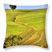 The Tree And The Furrows Throw Pillow