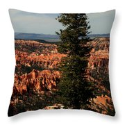 The Tree In Bryce Canyon Throw Pillow