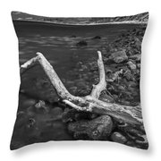 The Tree In The Water. Throw Pillow