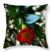 The Trumpet Sounded Throw Pillow