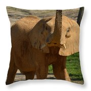 The Trumpeter Sounds Throw Pillow