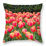 The Tulips Are Coming Throw Pillow