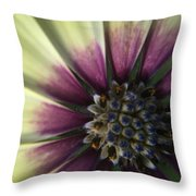 The Twin Throw Pillow
