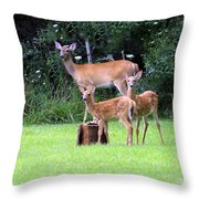 The Twins Throw Pillow by Kathy DesJardins