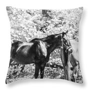 The Two Beauties Throw Pillow