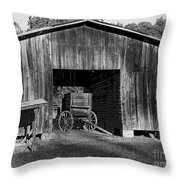 The Undertaker's Wagon Black And White 2 Throw Pillow
