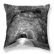 The Unknown II Throw Pillow