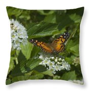 The Unnamed Butterfly Throw Pillow