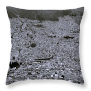 The Urban City Throw Pillow