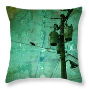 The Urban Crow Throw Pillow