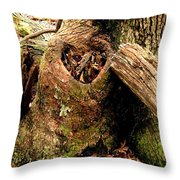The Valentine Tree 1 Throw Pillow
