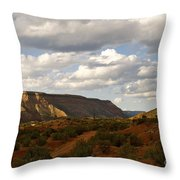 The Valley II Throw Pillow