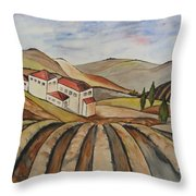 The Valley Of Jesrael Throw Pillow