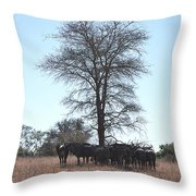 The Value Of A Shade Throw Pillow