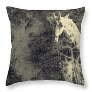 ...the Vast Expanses Of The Earth Throw Pillow