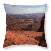 The Vast Lands Throw Pillow