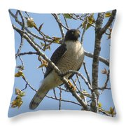 The View From Above V Throw Pillow