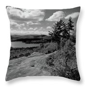 The View From Bald Mountain Throw Pillow