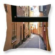 The View The Tourists Don't See Throw Pillow