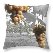 The Vineyard 2  Throw Pillow