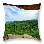 The Vista Extraordinaire Throw Pillow