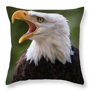 The Voice Of The Nature 2 Throw Pillow