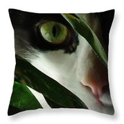 The  Voyeur Throw Pillow