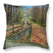 The Walk In The Woods Throw Pillow