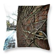 The Wall That Never Ends Throw Pillow