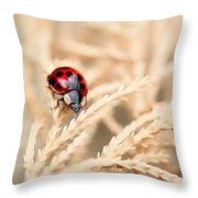 The Wandering Ladybug Throw Pillow