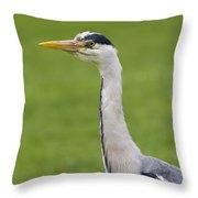 The Watchful Heron Throw Pillow